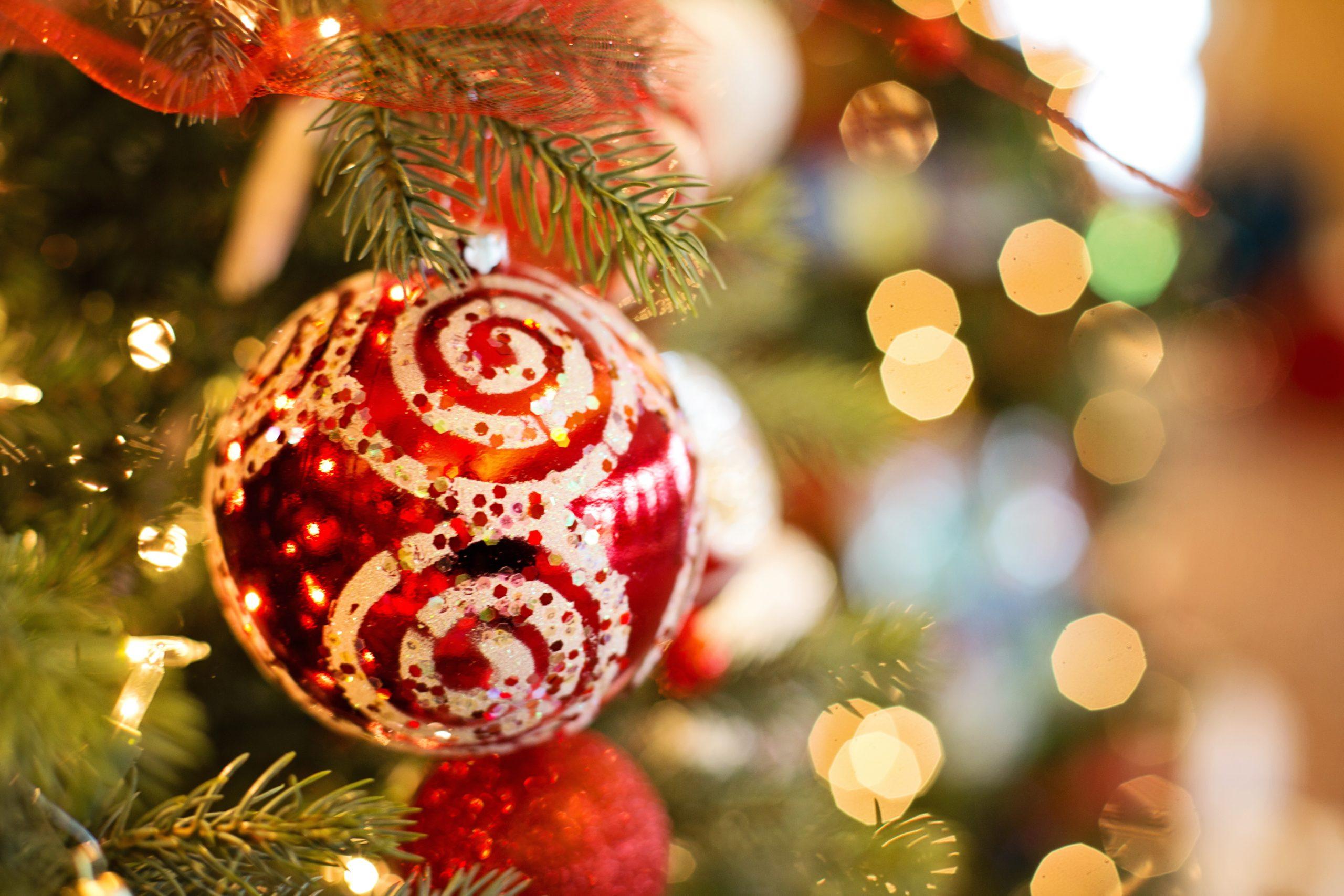 Il Villaggio di Babbo Natale con Mondo Verde