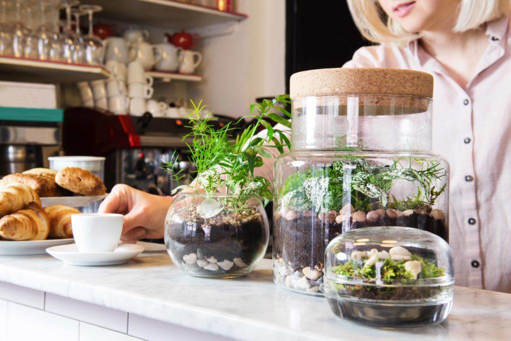 Sèlva design arte e natura allestimento caffetteria